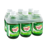 Canada Dry Ginger Ale - 6 CT / 10.0 FL OZ