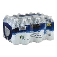 Essential Everyday Natural Spring Water - 24 PK / 16.9 FL OZ