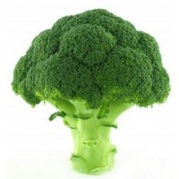 Fresh Broccoli Organic - 1 Bunch
