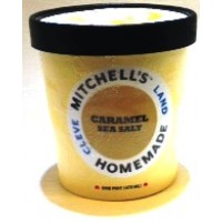 Mitchell's Homemade Caramel Sea Salt Ice Cream 1 Pt